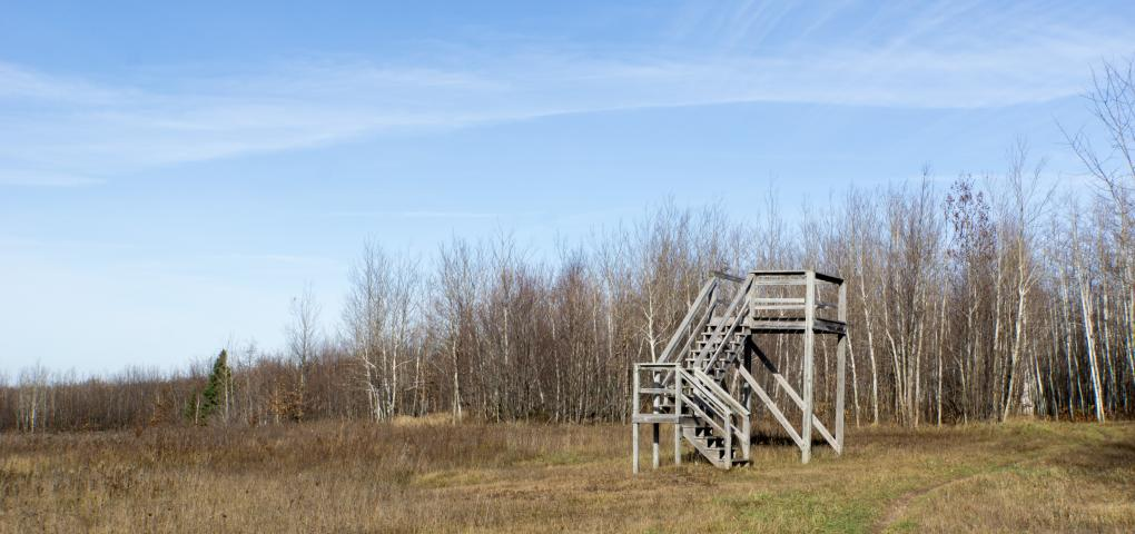 lookout tower with stairs overlooking large field surrounded by hardwood forests