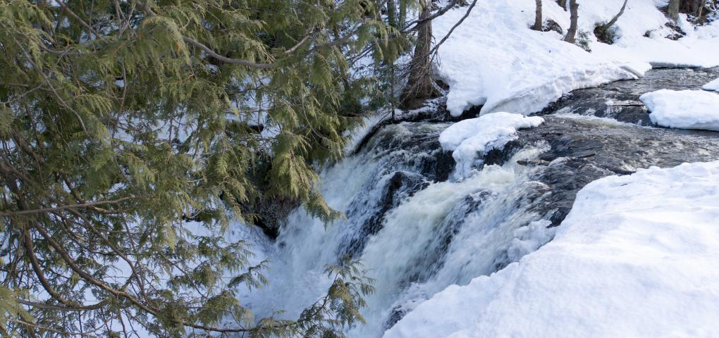 upper falls flowing through the winter white with dark green conifers as contrast