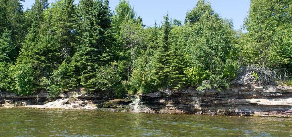looking at the outlet of the creek to Lake Superior thick with trees